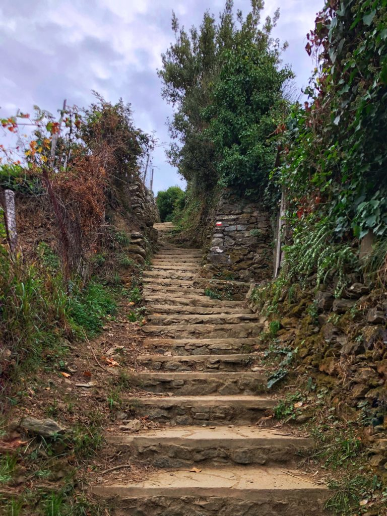 Steep stone stairs on trail at Cinque Terre