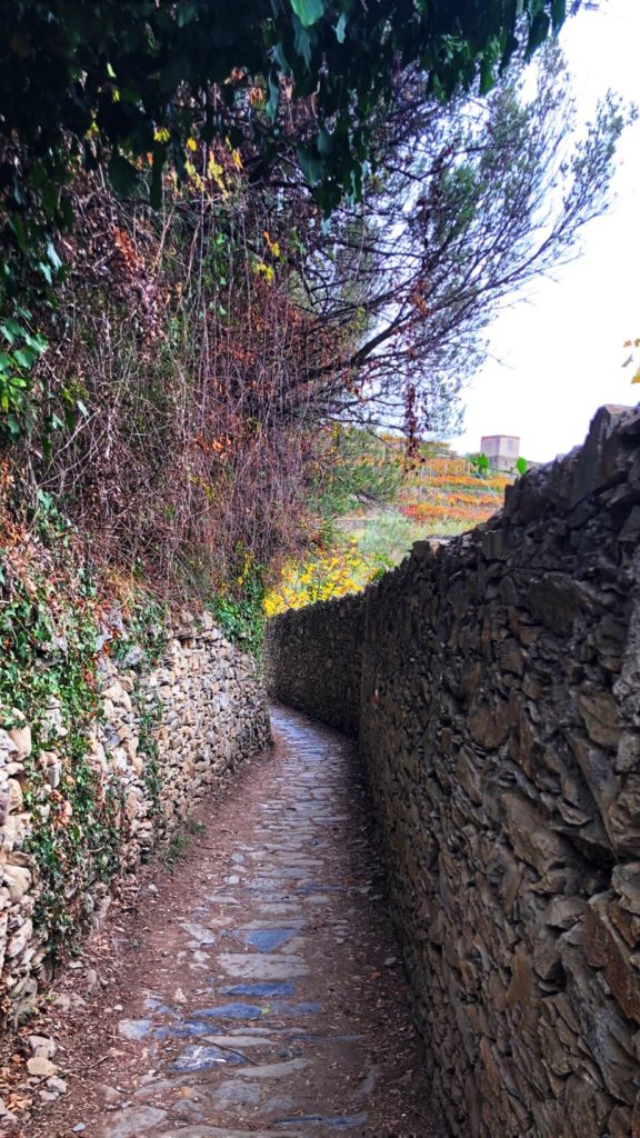 Path to Cornelia on Cinque Terre
