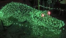 Holiday Lights, North Alabama