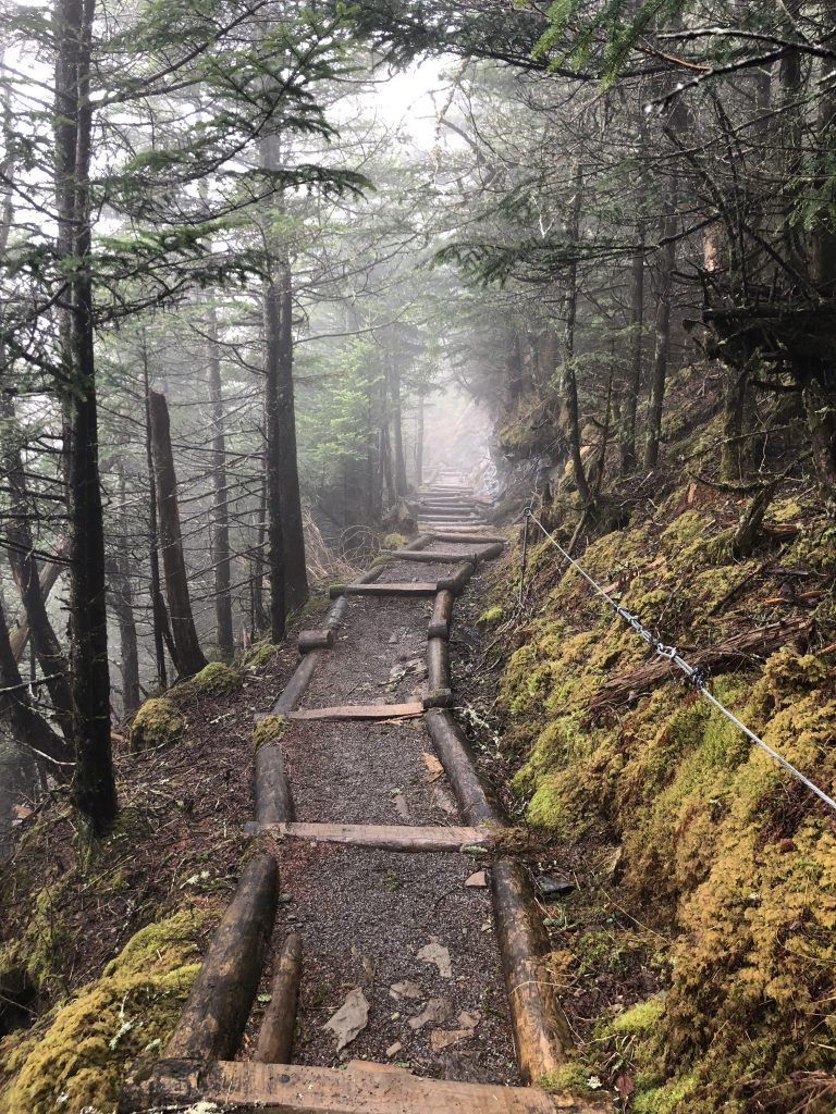 Hiking to LeConte Lodge, Great Smoky Mountain National ...